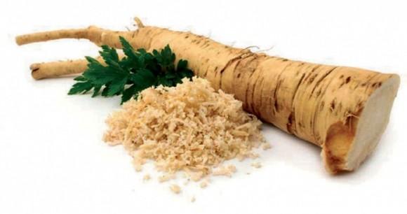 horseradish pic